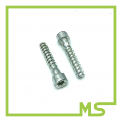 Schraube für Griffrohr 026 MS260 seitlich